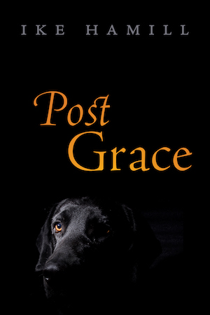 Read more about the article Post Grace